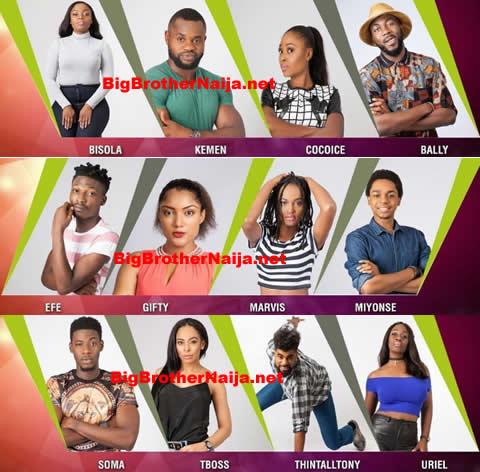 Big Brother Naija 2017 Housemates, 7 males and 7 females