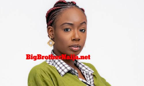 Tolanibaj Tolani Shobajo, Big Brother Naija 2020 Housemate